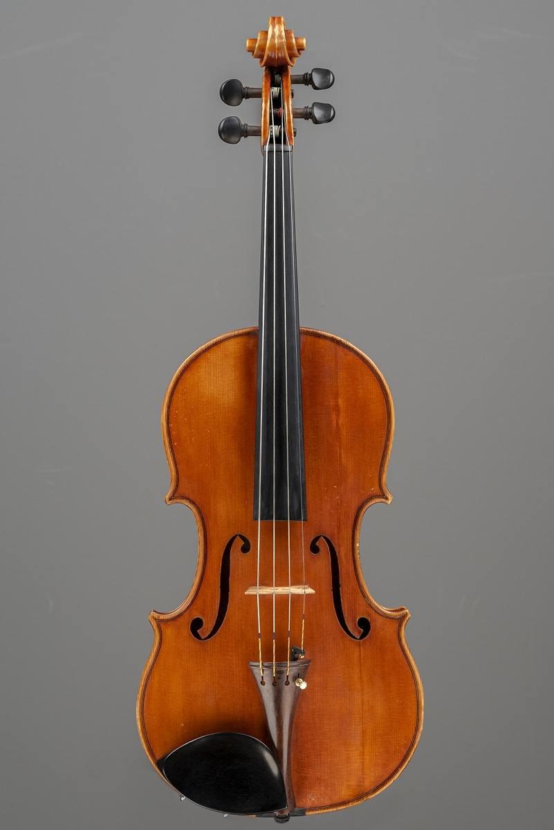 Georgeus Foschi Viola Top FOS82